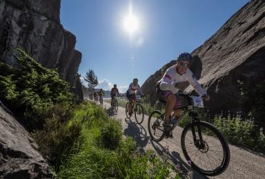 lisens sykkel 2018